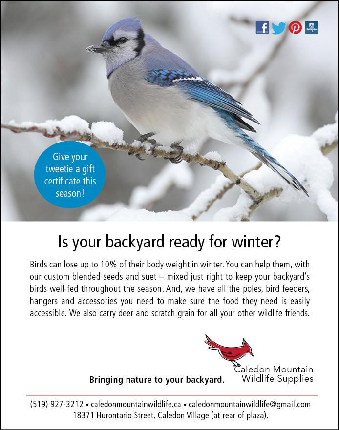 BIRD FEED STORE IN CALEDON