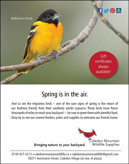 Spring is in the air and so are the migratory birds. Drop buy to see out newest bird feeders, poles and bird supplies.