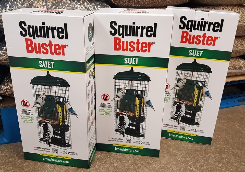 It's finally here… a squirrel-proof suet feeder!
